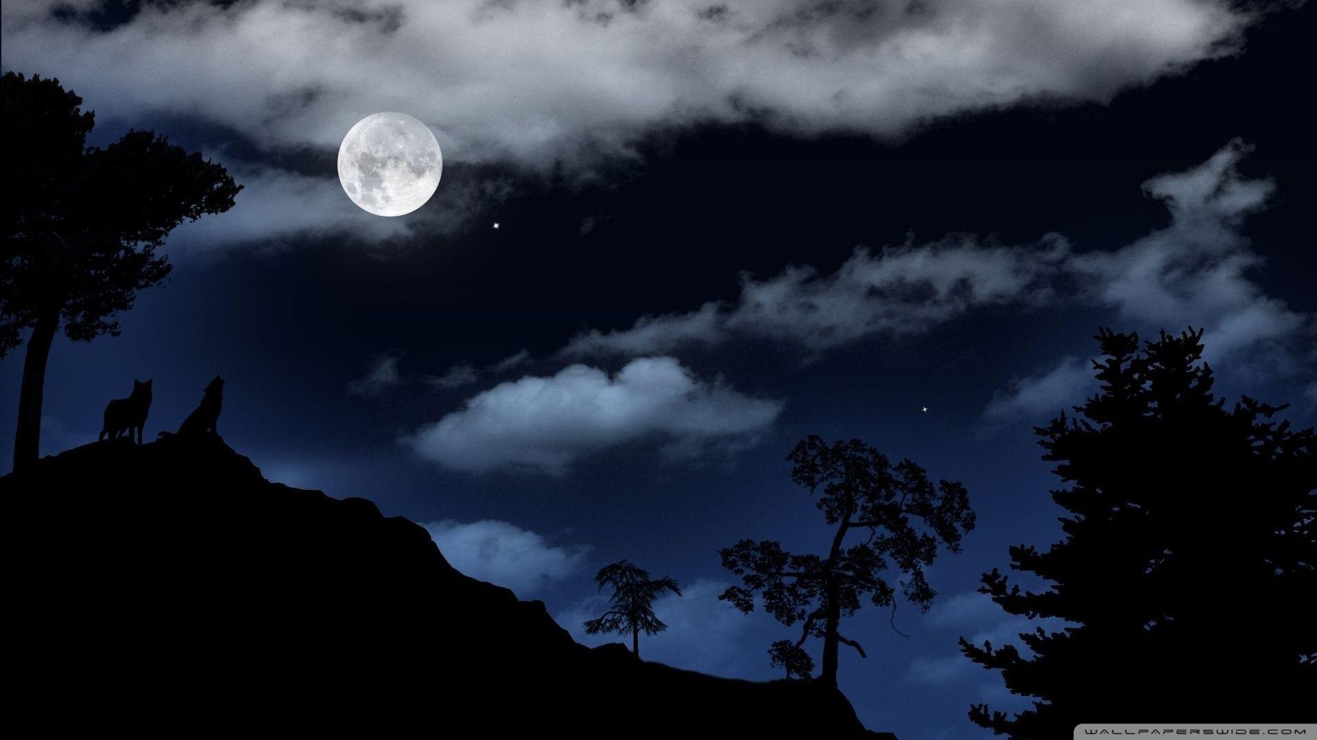full moon over the forest ❤ 4k hd desktop wallpaper for 4k ultra hd tv