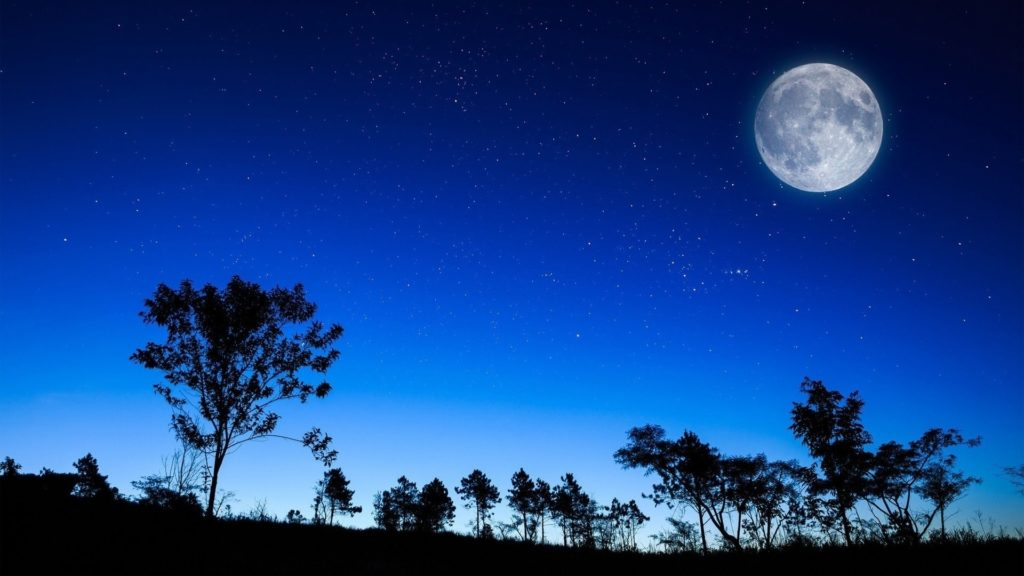 10 Top Full Moon Night Wallpaper FULL HD 1920×1080 For PC Desktop 2020 free download full moon over the treeline walldevil 1024x576
