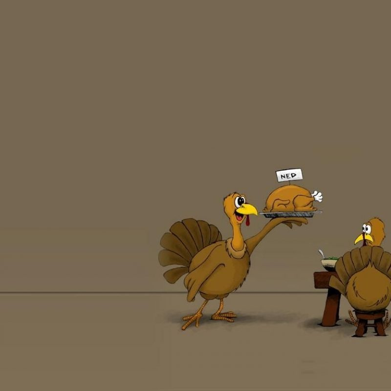 10 Latest Thanksgiving Turkey Wallpaper Hd FULL HD 1920×1080 For PC Desktop 2018 free download funny quotes free hd wallpapers for desktop thanksgiving hd 800x800