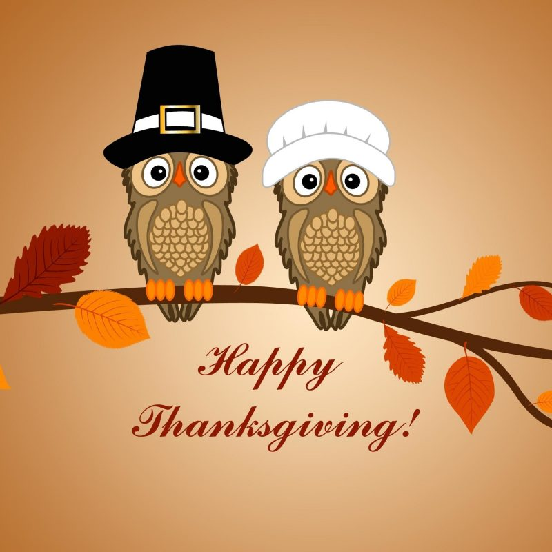 10 Top Cute Thanksgiving Wallpaper Backgrounds FULL HD 1920×1080 For PC Desktop 2018 free download funny thanksgiving backgrounds 62 images 800x800