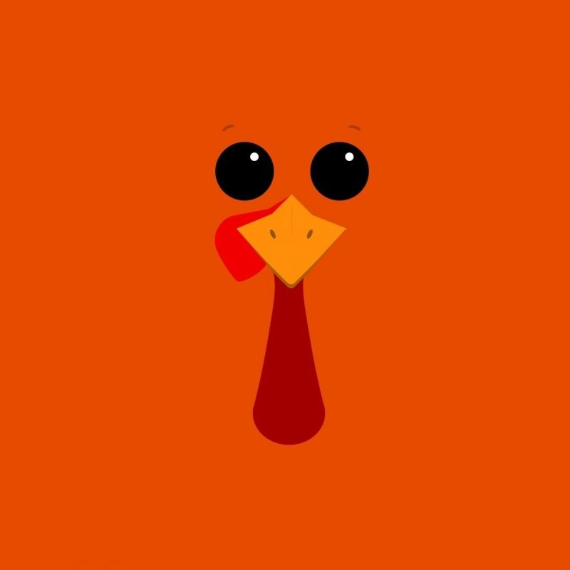 10 Latest Funny Thanksgiving Background Wallpaper FULL HD 1920×1080 For PC Desktop 2020 free download funny thanksgiving themes events pinterest thanksgiving 2 800x800