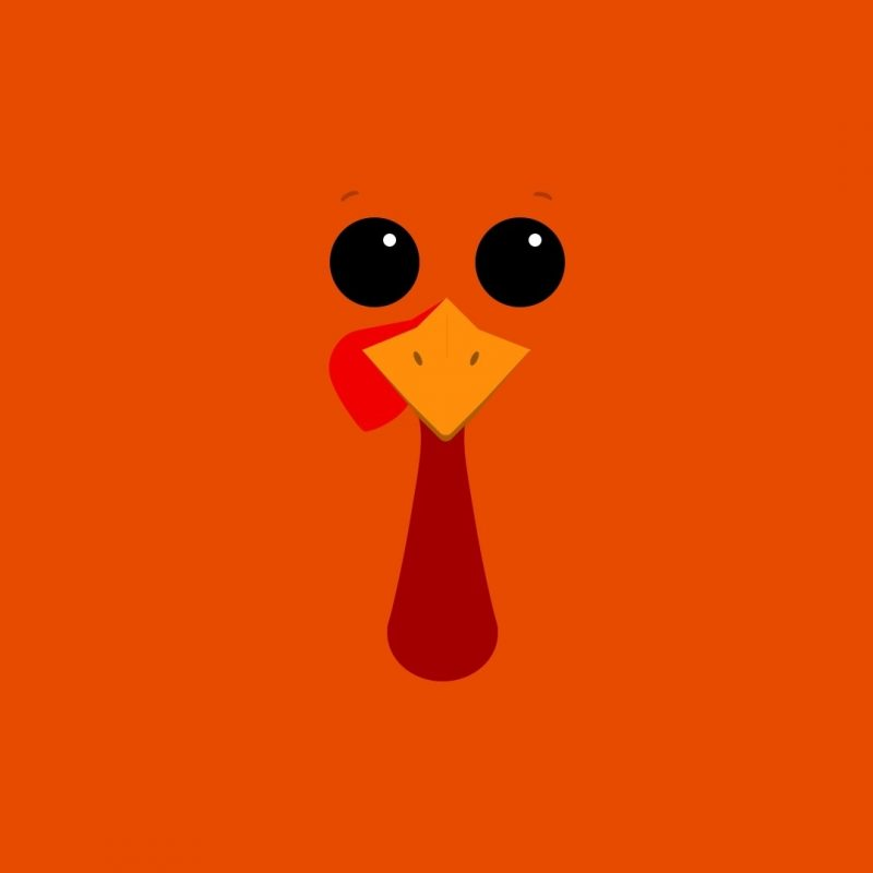 10 Top Cute Thanksgiving Wallpaper Backgrounds FULL HD 1920×1080 For PC Desktop 2018 free download funny thanksgiving themes events pinterest thanksgiving 800x800