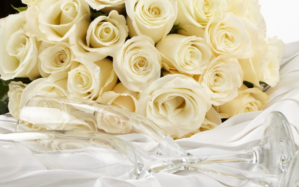 10 New White Roses Background Tumblr FULL HD 1080p For PC Desktop 2020 free download gaeroladid white rose bouquet tumblr images 1024x640