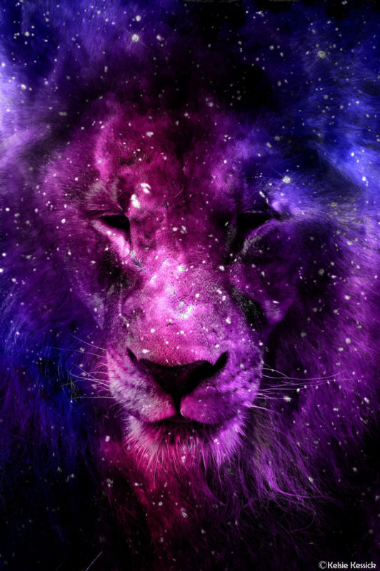 10 Latest Galaxy Lion Wallpaper FULL HD 1920×1080 For PC Background 2018 free download galaxy lionkmkessick on deviantart india random for india in 532x800