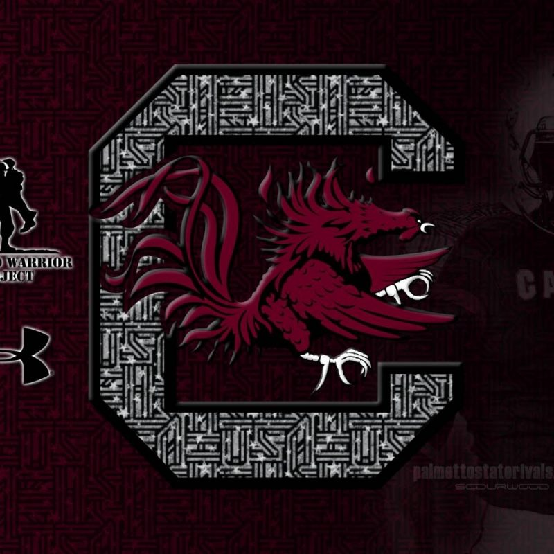 10 Best University Of South Carolina Wallpaper FULL HD 1080p For PC Desktop 2018 free download gamecocks wallpapers group 57 1 800x800