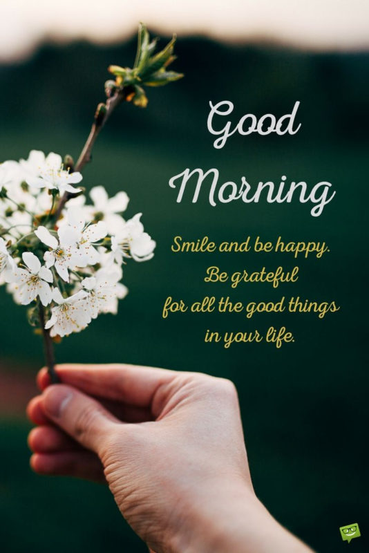 10 Most Popular Images For Good Morning FULL HD 1080p For PC Desktop 2018 free download get on the right track msg mensagens de bom dia bom dia gif 534x800