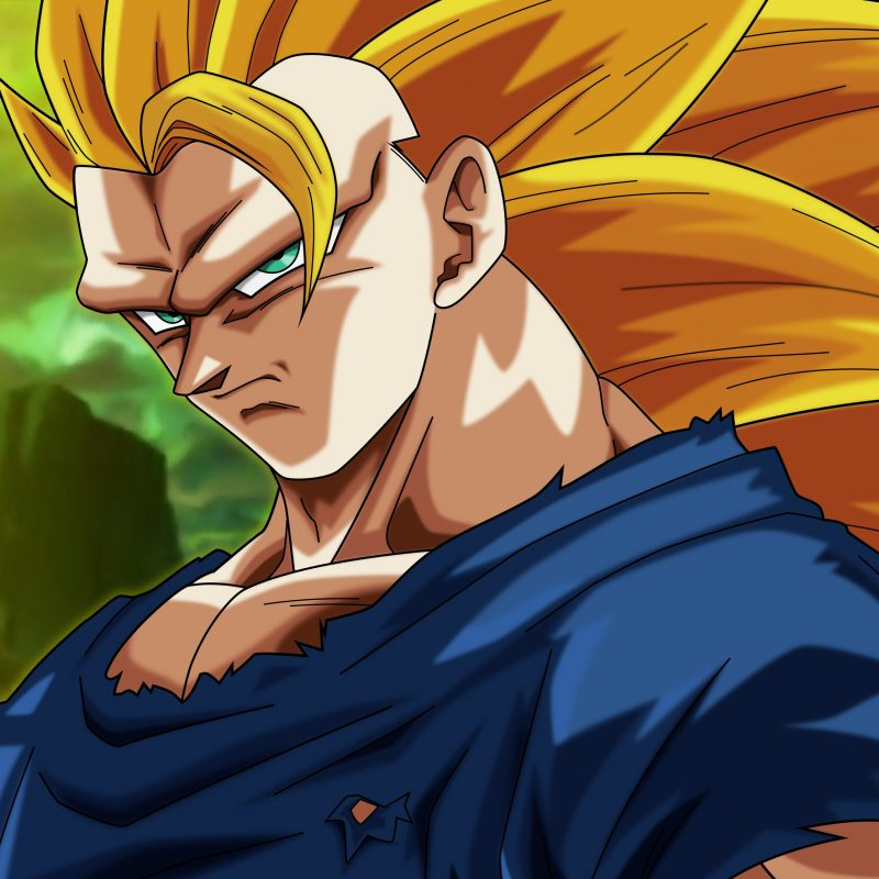 10 Top Super Saiyan 3 Goku Wallpaper FULL HD 1920×1080 For PC Desktop 2018 free download goku super saiyan 3 4k ultra hd fond decran and arriere plan 800x800
