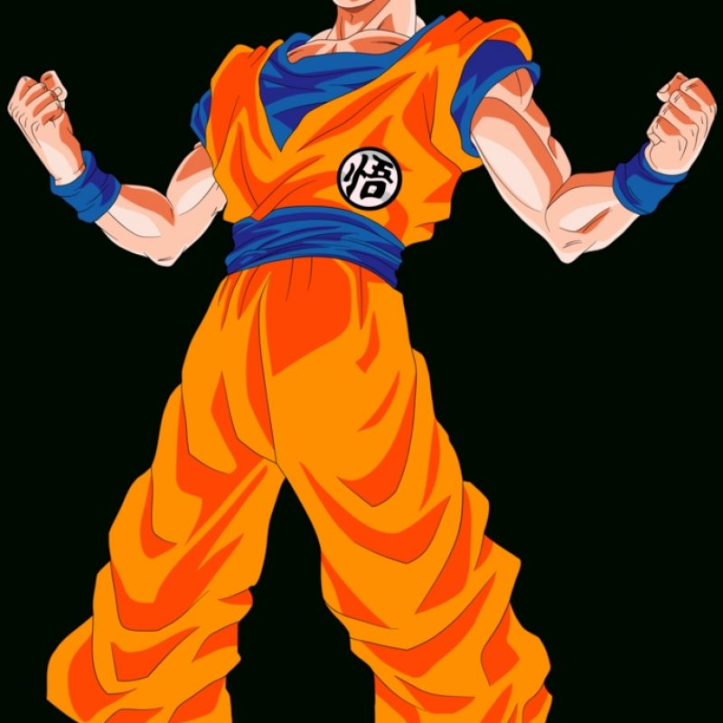10 Best Pictures Of Goku Super Saiyan God FULL HD 1920×1080 For PC Background 2018 free download goku super saiyan god power up palette 1dragonballaffinity on 800x800