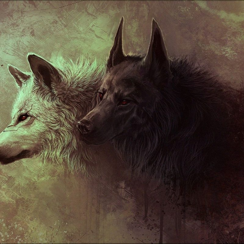 10 Latest Black Wolf Desktop Background FULL HD 1080p For PC Desktop 2018 free download gray and black wolves painting wallpapers hd desktop and mobile 800x800