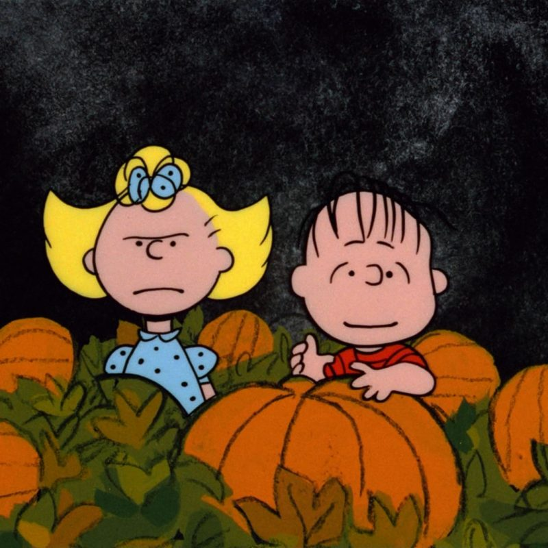 10 Latest The Great Pumpkin Wallpaper FULL HD 1920×1080 For PC Background 2020 free download great pumpkin charlie brown hd backgrounds pixelstalk 1 800x800