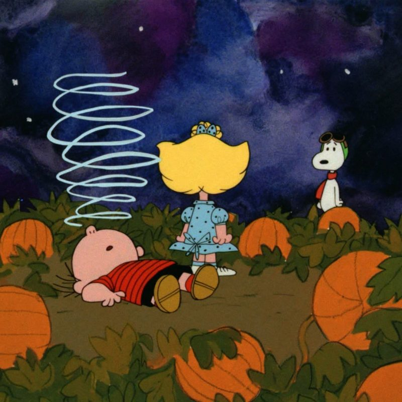 10 Latest The Great Pumpkin Wallpaper FULL HD 1920×1080 For PC Background 2020 free download great pumpkin charlie brown hd backgrounds pixelstalk 800x800