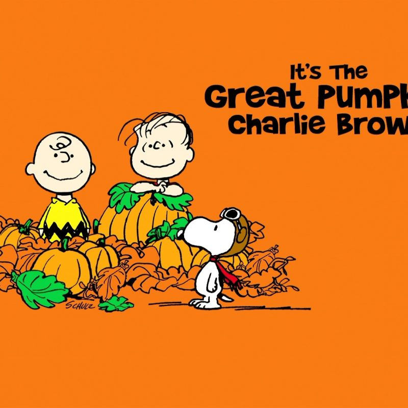 10 Latest The Great Pumpkin Wallpaper FULL HD 1920×1080 For PC Background 2018 free download great pumpkin charlie brown wallpapers hd pixelstalk 800x800