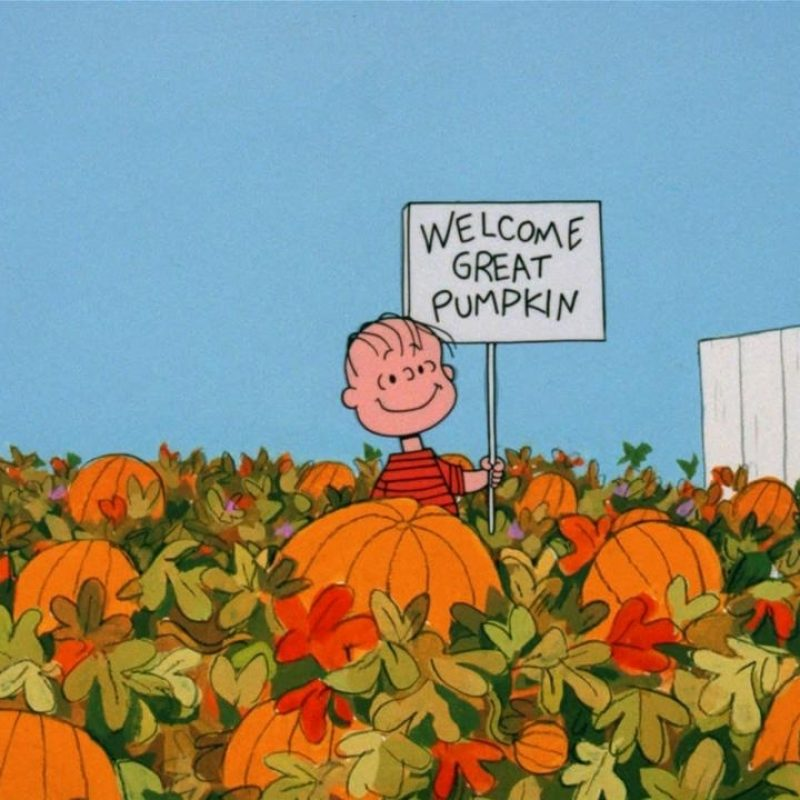 10 Latest The Great Pumpkin Wallpaper FULL HD 1920×1080 For PC Background 2020 free download great pumpkin charlie brown wallpapers wallpaper cave 1 800x800