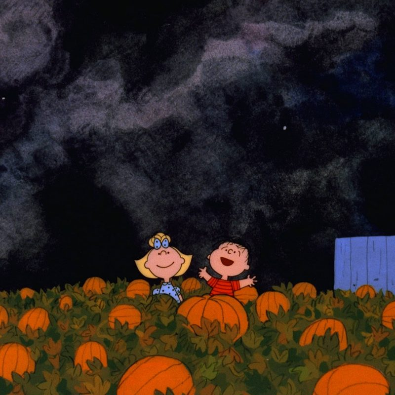 10 Latest The Great Pumpkin Wallpaper FULL HD 1920×1080 For PC Background 2018 free download great pumpkin charlie brown wallpapers wallpaper cave 800x800