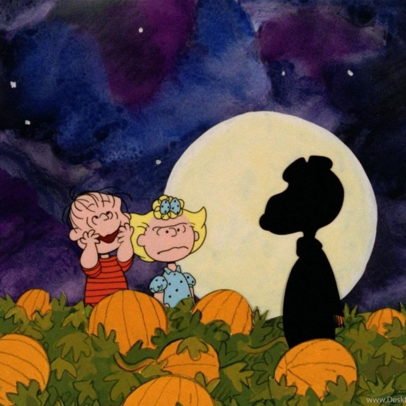 10 Top Charlie Brown Halloween Wallpaper FULL HD 1080p For PC Background 2020 free download great pumpkin charlie brown wallpapers wallpapers cave desktop 800x800