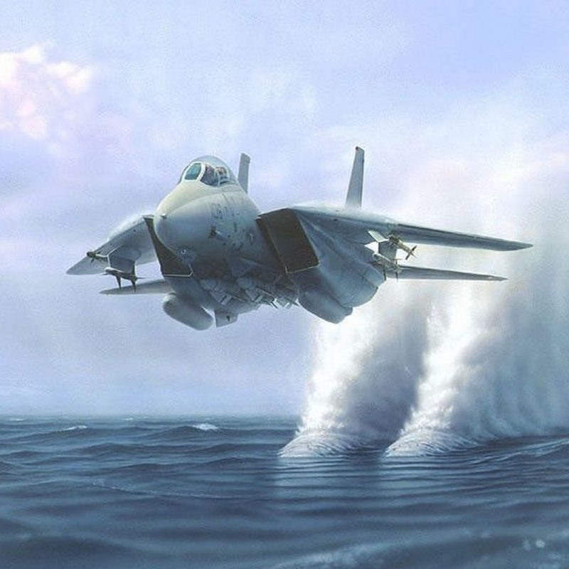 10 Most Popular F 14 Tomcat Wallpaper FULL HD 1080p For PC Background 2018 free download grumman f 14 tomcat full hd fond decran and arriere plan 3 800x800