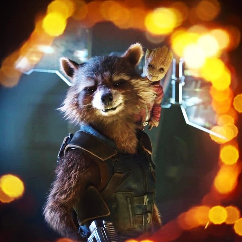 10 Most Popular Rocket And Groot Wallpaper FULL HD 1080p For PC Desktop 2018 free download guardians of the galaxy vol 2 rocket raccoon and groot wallpaper 800x800