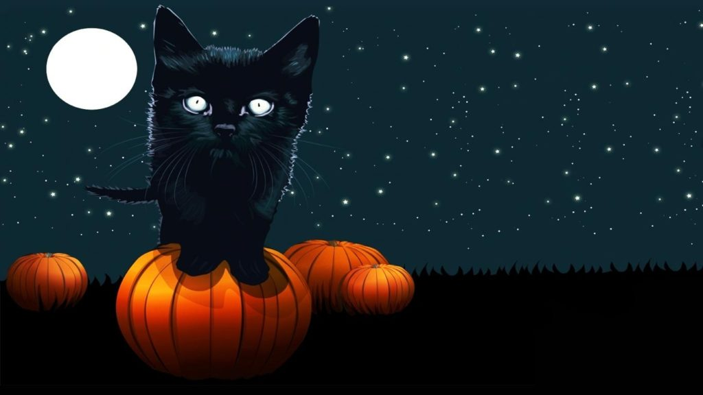10 New Cute Cat Halloween Backgrounds FULL HD 1920×1080 For PC Desktop 2018 free download halloween cat pics free download hd halloween black cat 1024x576