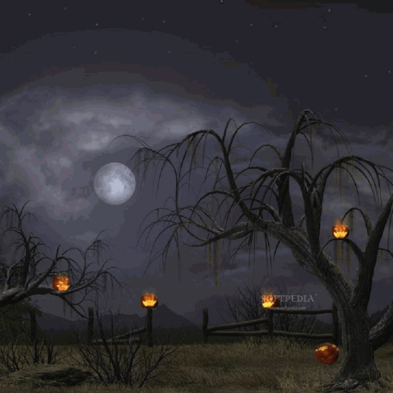 10 Best Free Halloween Desktop Background FULL HD 1080p For PC Desktop 2021 free download halloween desktop wallpapers wallpaper cave 800x800