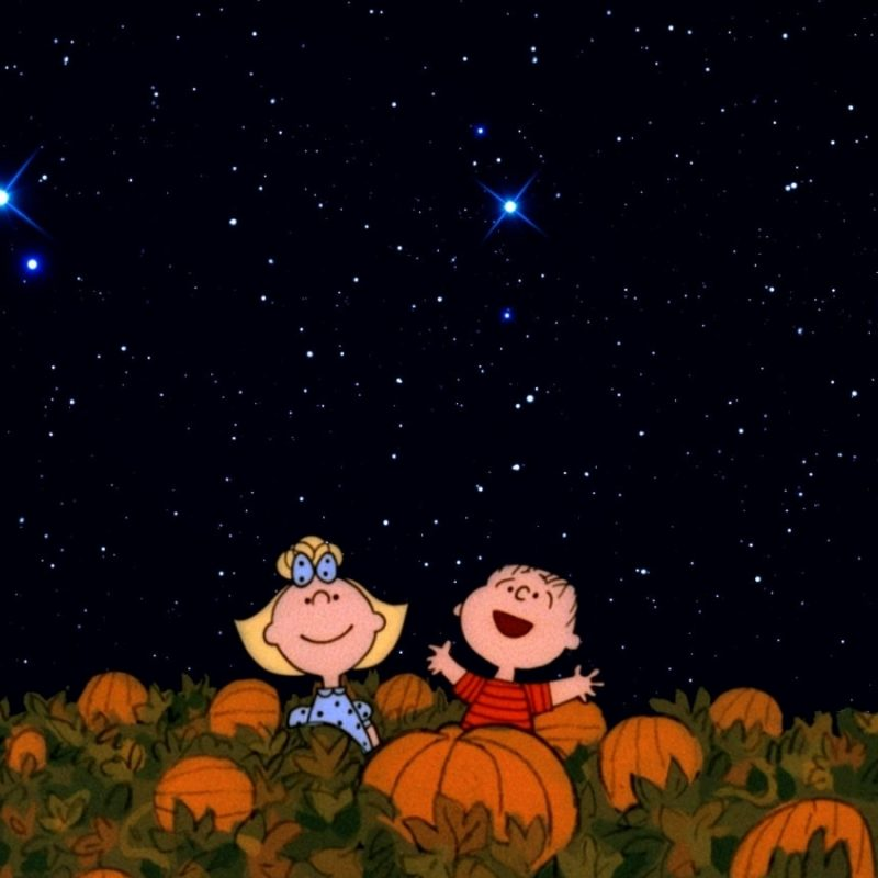 10 Latest The Great Pumpkin Wallpaper FULL HD 1920×1080 For PC Background 2018 free download halloween its the great pumpkin charlie brown wallpapers 800x800