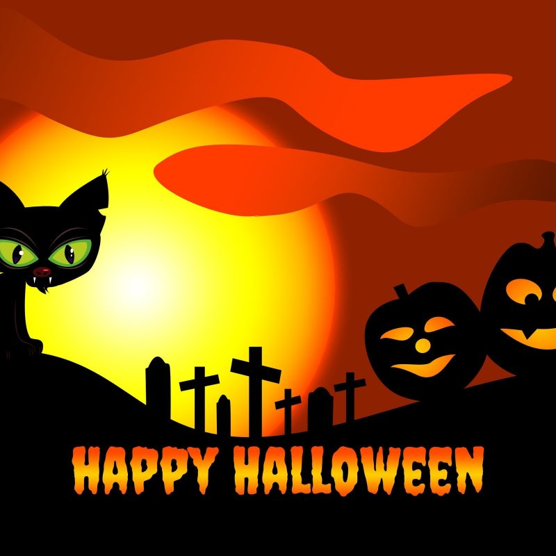 10 New Cute Happy Halloween Wallpaper FULL HD 1920×1080 For PC Background 2018 free download halloween wallpaper 2017 happy halloween pictures 2017 800x800