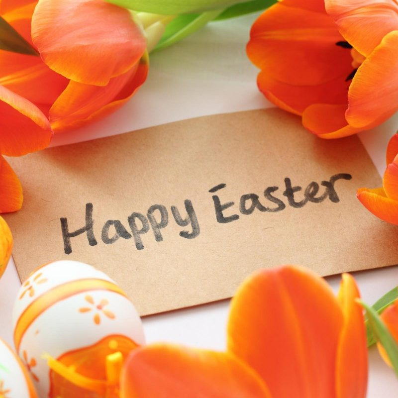 10 Most Popular Happy Easter Wallpaper Hd FULL HD 1920×1080 For PC Background 2018 free download happy easter holiday wallpaper hd media file pixelstalk 800x800