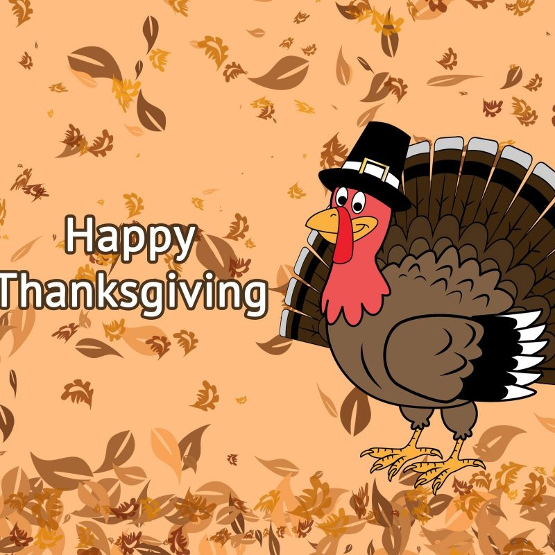 10 Latest Thanksgiving Turkey Wallpaper Hd FULL HD 1920×1080 For PC Desktop 2020 free download happy thanksgiving 2017 images pixelstalk 800x800