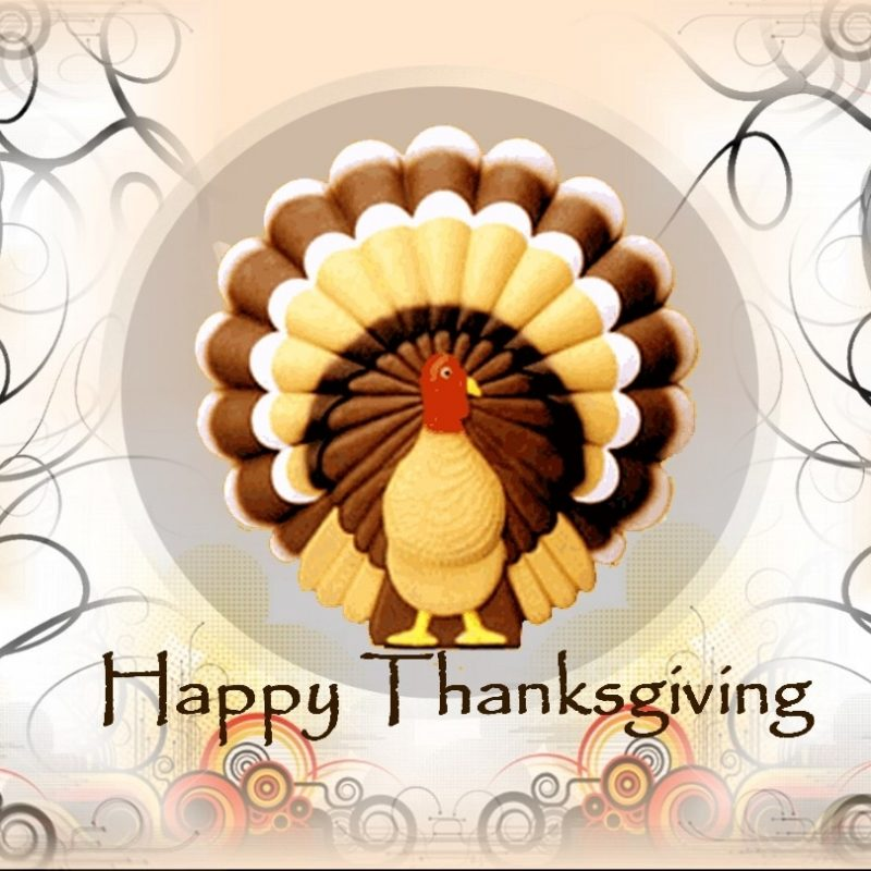 10 Latest Happy Thanksgiving Hd Images FULL HD 1080p For PC Background 2020 free download happy thanksgiving happy thanksgiving clip art wallpaper hd 1 800x800