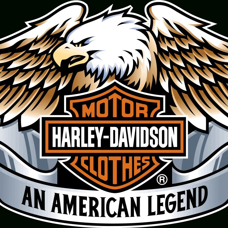 10 Latest Harley Davidson Symbol Pics FULL HD 1920×1080 For PC Desktop 2018 free download harley davidson logo wallpapers wallpaper cave 800x800