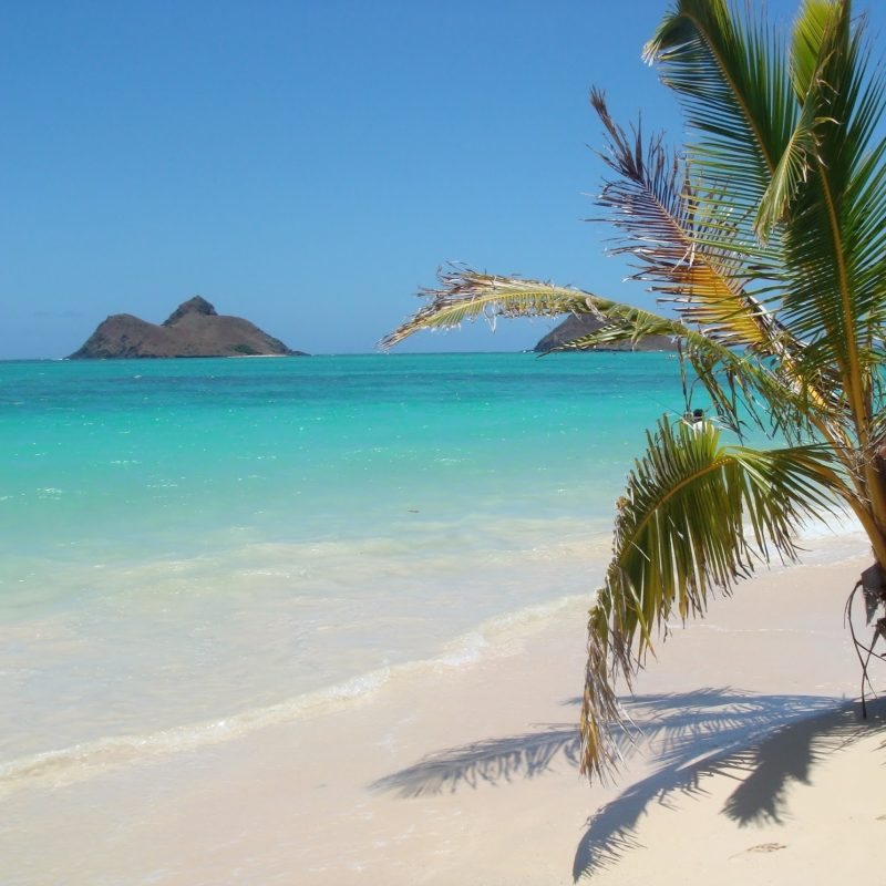 10 Latest Pics Of Hawaiian Beaches FULL HD 1080p For PC Desktop 2018 free download hawaiian beaches hi united states for amazingly beautiful lanikai 800x800