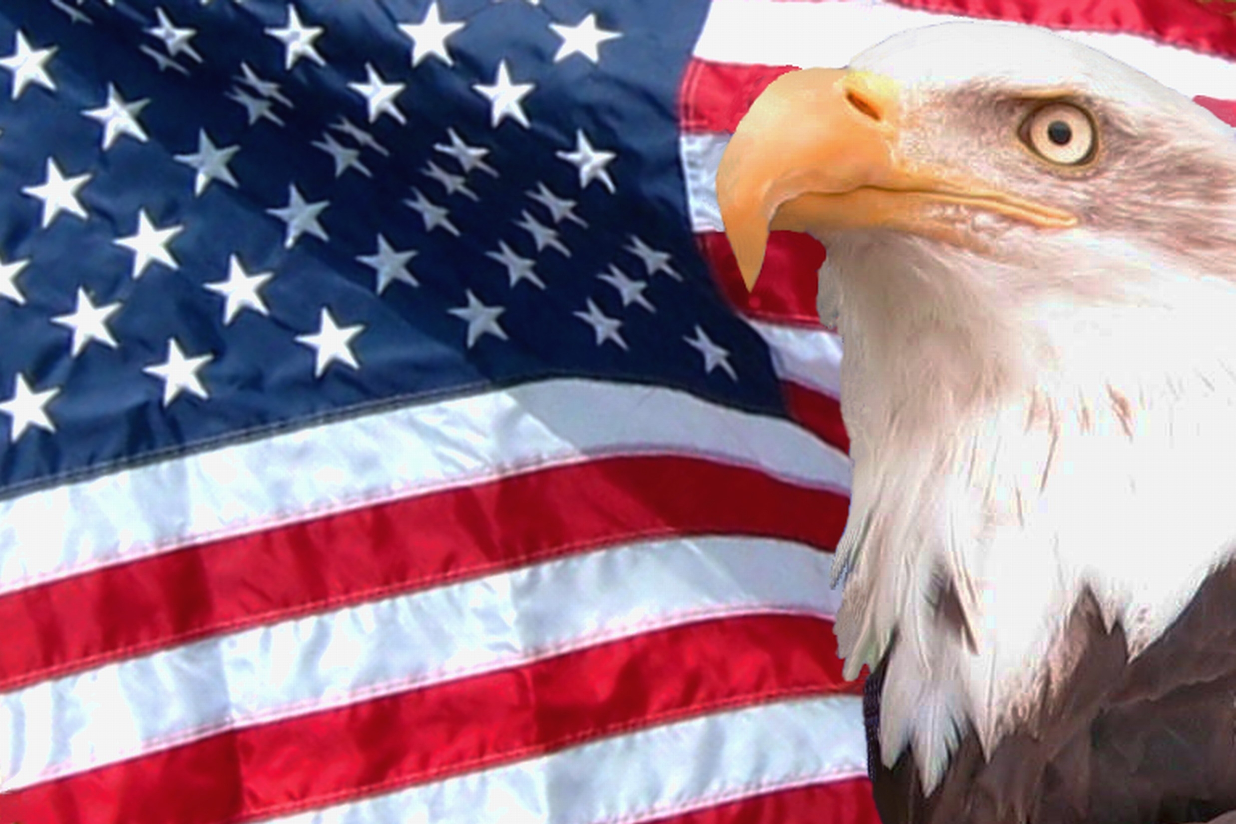 hd american flag with eagle background