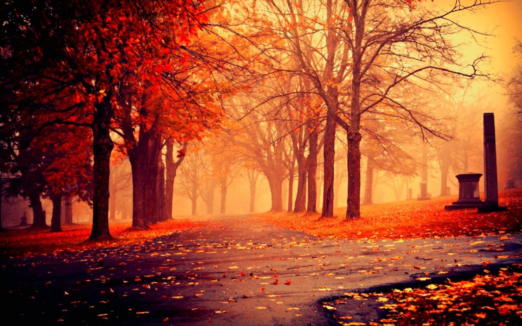 10 Best High Definition Autumn Wallpaper FULL HD 1080p For PC Background 2020 free download hd autumn image 9775 hdwpro 1024x640