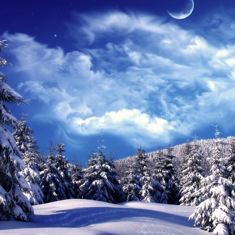 10 New Winter Wonderland Hd Wallpaper FULL HD 1920×1080 For PC Desktop 2018 free download hd awesome winter wonderland background image hd new wallpaper hd 1 800x800