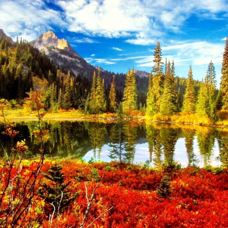 10 Most Popular Desktop Backgrounds Fall Scenery Full Hd 1080p For