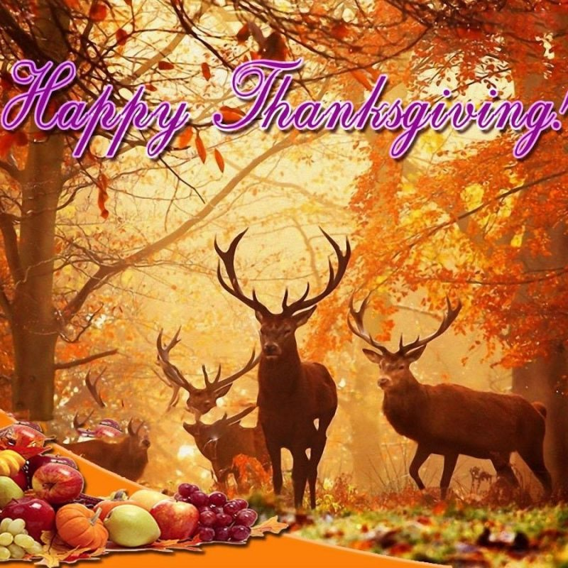 10 New Thanksgiving Background Wallpaper Hd FULL HD 1920×1080 For PC Desktop 2018 free download hd thanksgiving wallpaper top backgrounds wallpapers 800x800