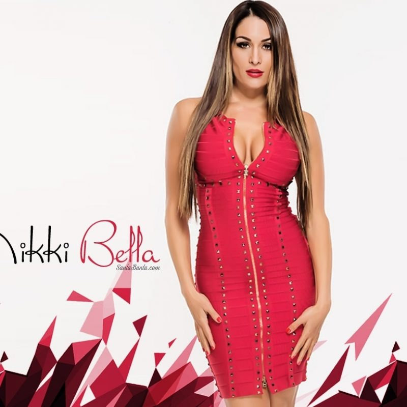 10 Best Wwe Nikki Bella Wallpaper FULL HD 1080p For PC Desktop 2018 free download hd wallpapers of hot babes hollywood actress i beautiful girls 1 800x800