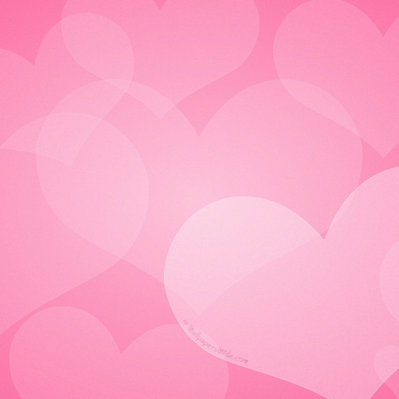 10 Top Free Valentine Wallpaper For Computers FULL HD 1920×1080 For PC Desktop 2018 free download hd wallpapers valentines download pixelstalk 800x800