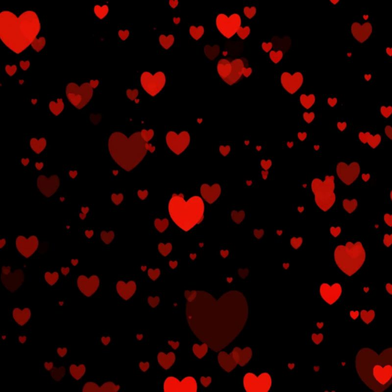 10 Top Red Hearts Black Background FULL HD 1920×1080 For PC Background 2018 free download heart video for valentines day for love appears on black background 800x800