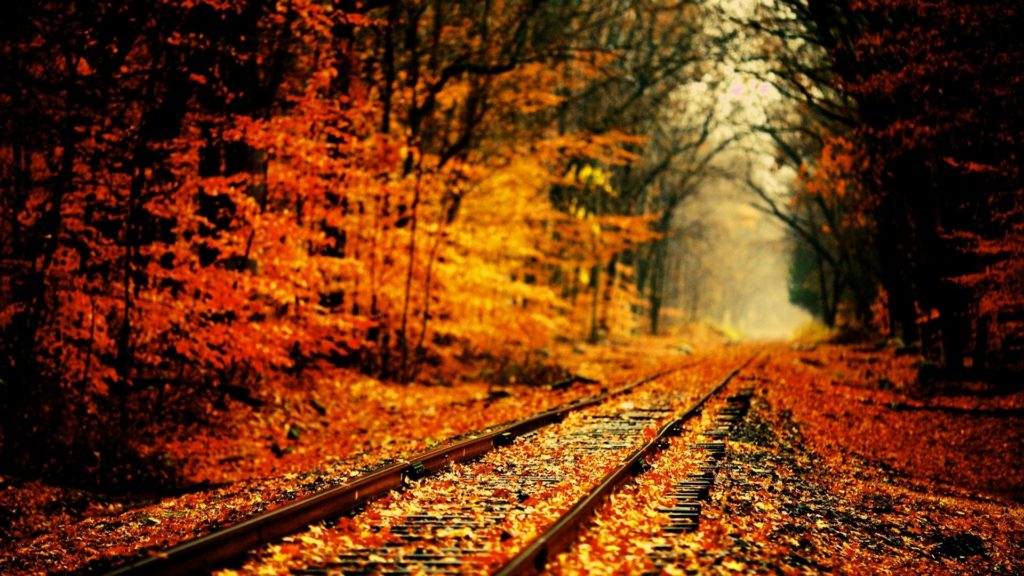 10 Best High Definition Autumn Wallpaper FULL HD 1080p For PC Background 2020 free download high definition fall wallpapers season wallpaper pinterest 1024x576