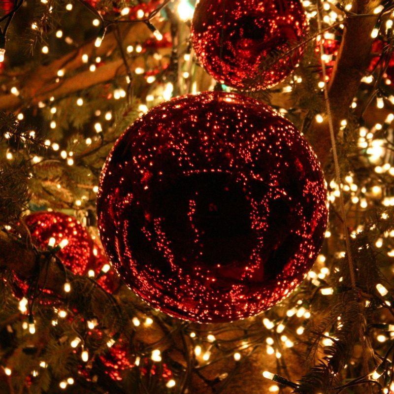 10 Latest Christmas Lights Widescreen Desktop Wallpaper FULL HD 1920×1080 For PC Desktop 2018 free download holiday christmas light christmas tree christmas lights christmas 800x800