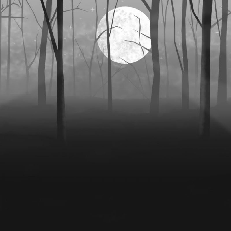 10 Top Dark Forest Background Drawing FULL HD 1080p For PC Background 2018 free download how to draw a forest at night part 1 with manga studio 5 youtube 800x800