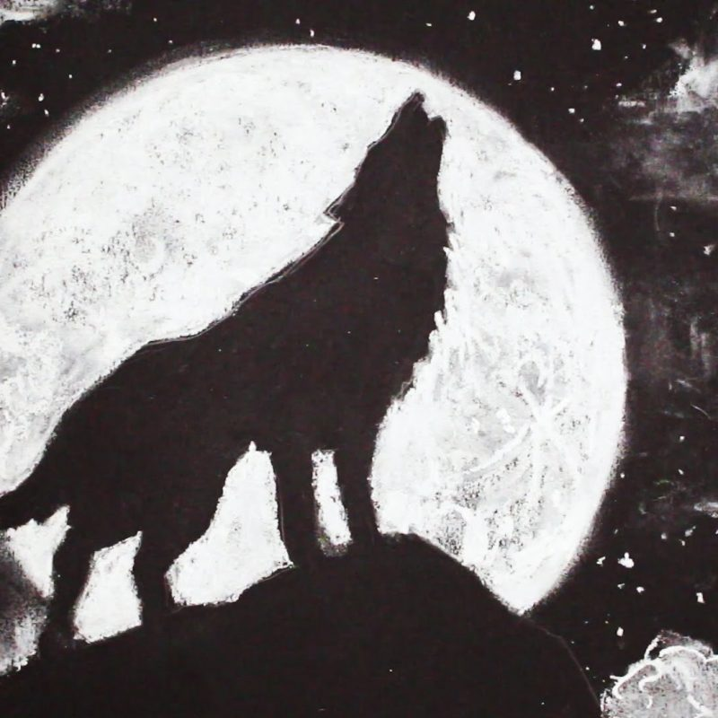 10 Most Popular Drawing Of A Wolf Howling At The Moon FULL HD 1080p For PC Background 2021 free download how to draw a wolf howling at the moon stepstep youtube 3 800x800