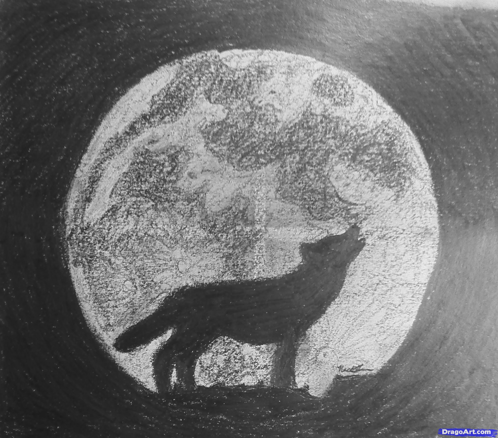 how to draw a wolf howling, stepstep, forest animals, animals