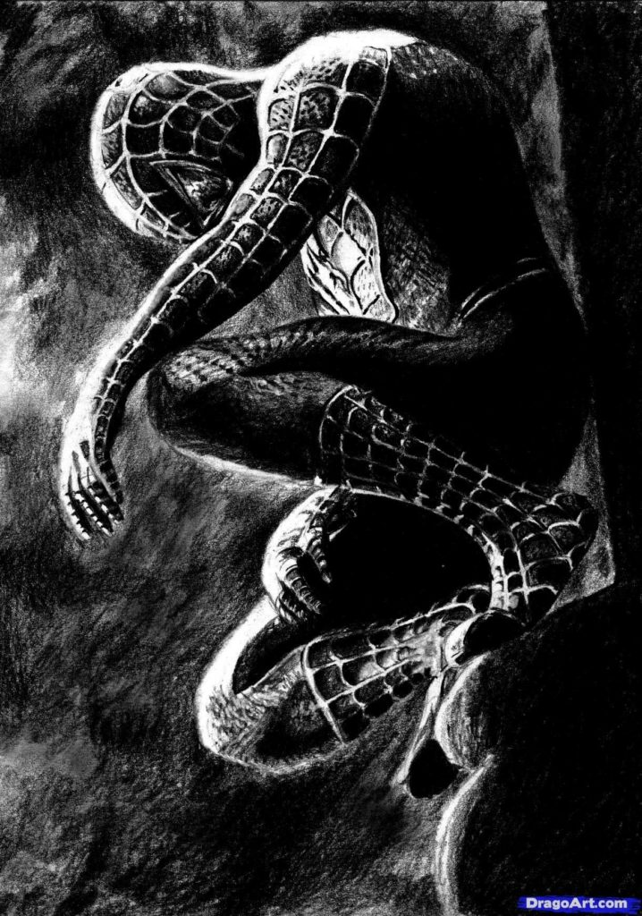 10 Latest Pictures Of The Black Spiderman FULL HD 1920×1080 For PC Desktop 2018 free download how to draw black spiderman black spiderman stepstep marvel 718x1024