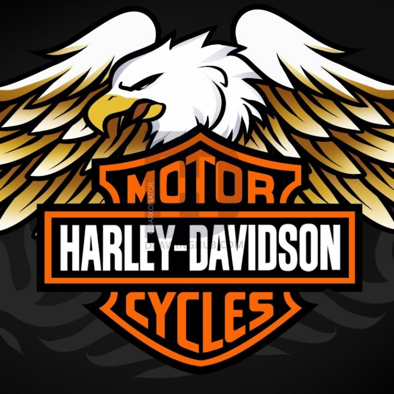10 Latest Harley Davidson Symbol Pics FULL HD 1920×1080 For PC Desktop 2018 free download how to draw harley davidson logo harley davidson stepstep 1 800x800