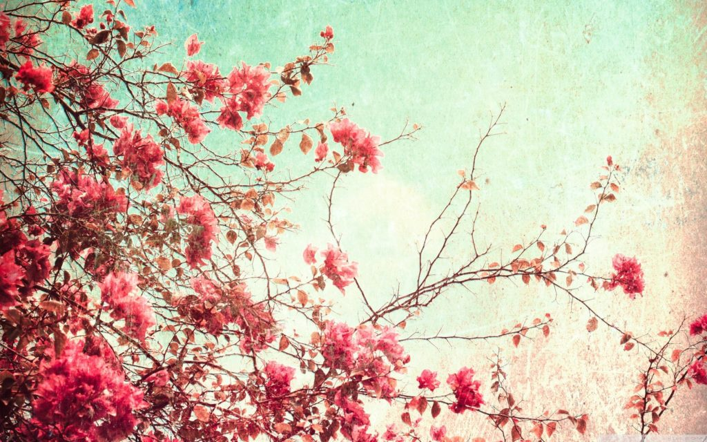 10 Latest Vintage Spring Desktop Background FULL HD 1080p For PC Desktop 2020 free download http www wallpaperfoy wp content uploads 2015 11 vintage 1024x640