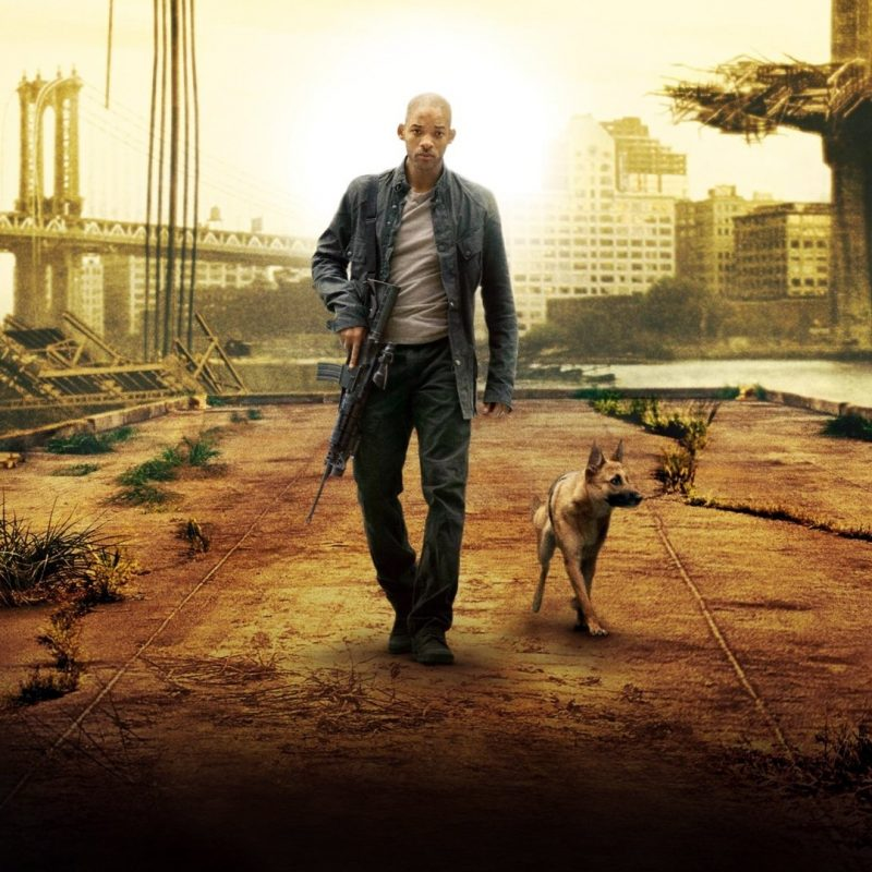 10 New I Am Legend Hd FULL HD 1080p For PC Background 2018 free download i am legend full hd fond decran and arriere plan 1920x1080 id 800x800