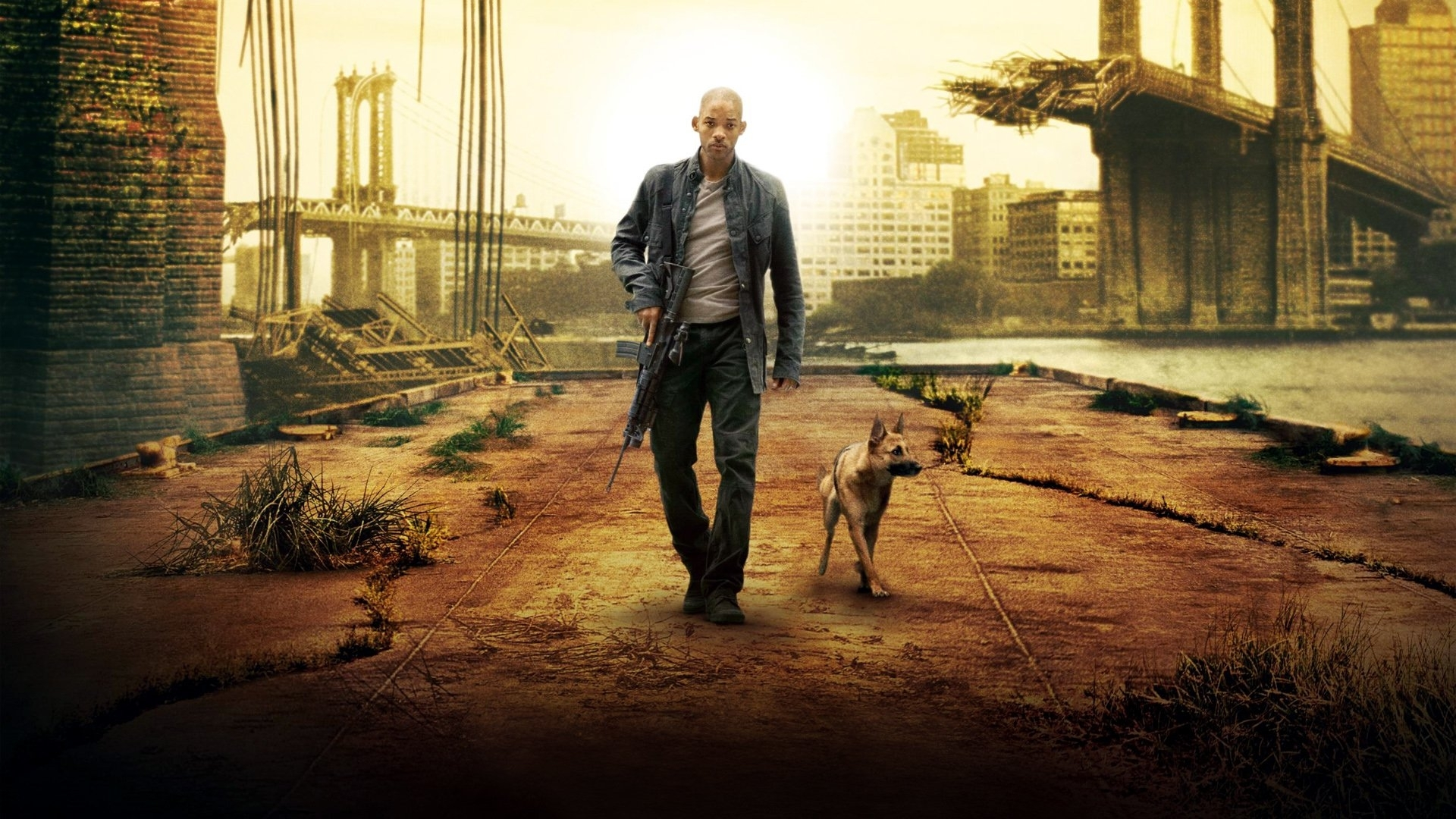 10 New I Am Legend Hd FULL HD 1080p For PC Background