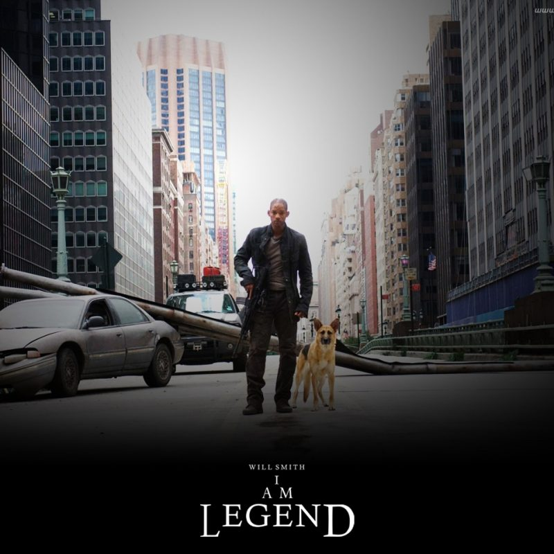 10 New I Am Legend Hd FULL HD 1080p For PC Background 2018 free download i am legend images iamlegend hd wallpaper and background photos 800x800