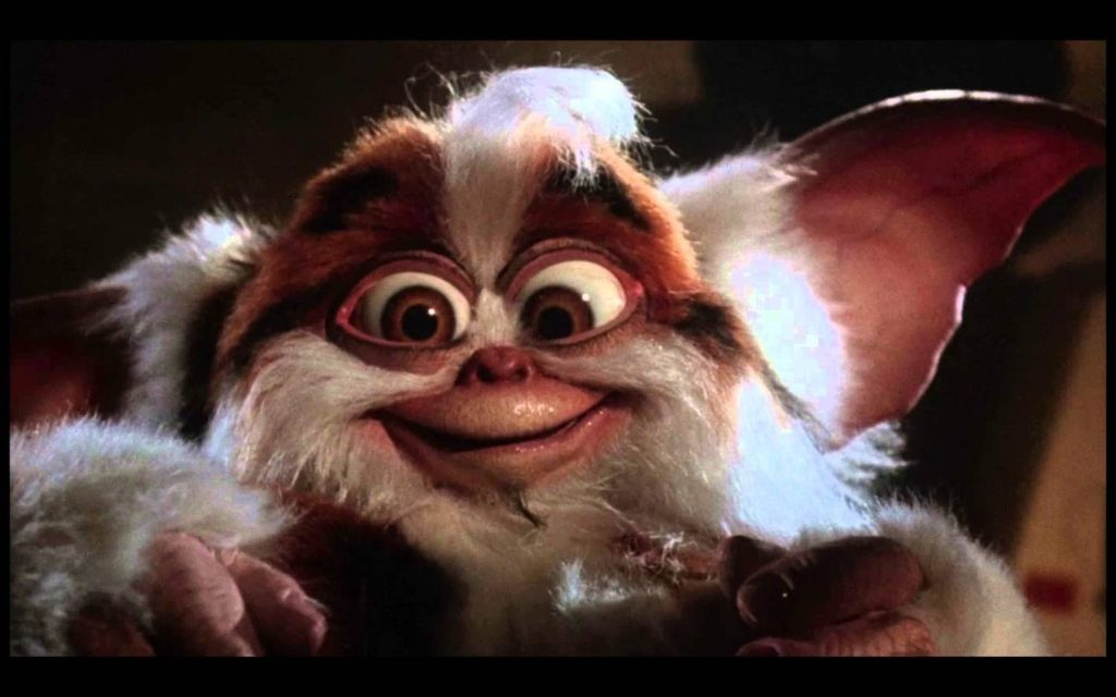 10 New Pictures Of Gizmo From Gremlins FULL HD 1080p For PC Background 2018 free download i not gizmo daffy mogwai from gremlins 2 how to be a crazy 1024x640